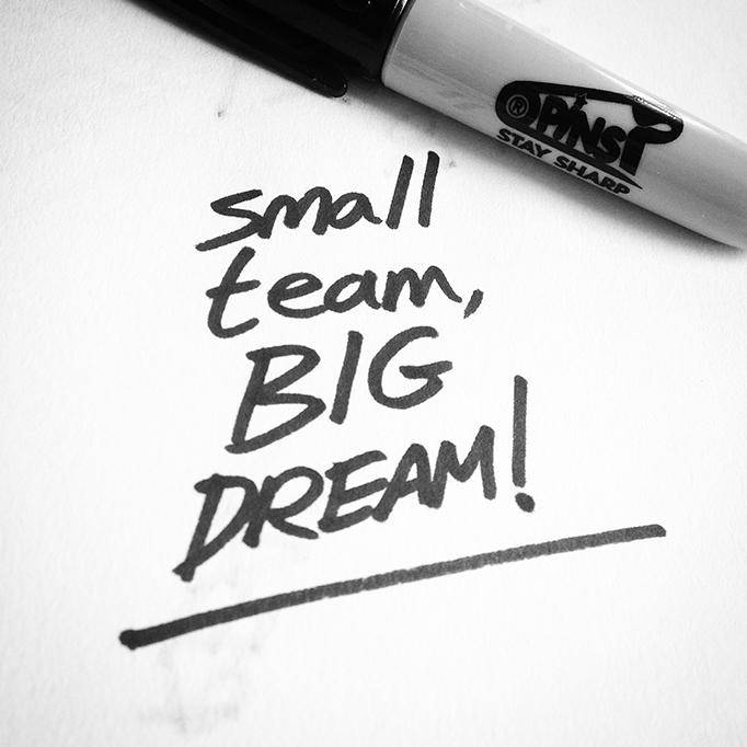 Small team BIG dream PINS quote